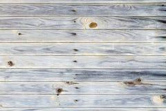 Knotty wood bakgrund Fotografering för Bildbyråer