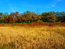 Lantligt Wisconsin landskap arkivbild