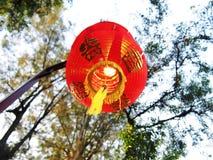 Lanturn cinese durante il nuovo anno cinese del ` s fotografie stock libere da diritti