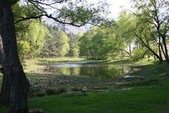 Lantys el Tarn, un pequeño lago - casi una charca imagen de archivo libre de regalías
