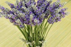 Lanvender en florero Foto de archivo libre de regalías