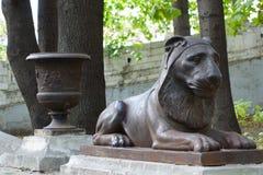 Lany ?elazny nieokie?znany lew przy poprzedni? rezydencj? ziemsk? w Moskwa zdjęcia royalty free