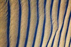 Lanz西班牙干燥摘要的沙子和地衣 库存图片