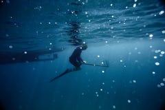 Lanza-pescador foto de archivo