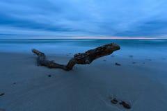 Lanzado por el mar Fotos de archivo libres de regalías