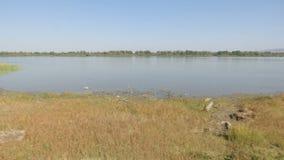 Lanzamiento de la cacerola del pantano almacen de metraje de vídeo