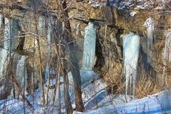 Lanzamiento del invierno Imagen de archivo libre de regalías