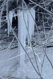 Lanzamiento del invierno Imágenes de archivo libres de regalías