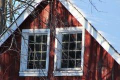 Lanzamiento del invierno Fotos de archivo