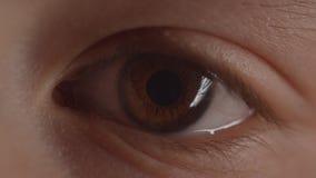 Lanzamiento del primer del alumno verdoso del ojo que se encoge y que ensancha con el cambio de la iluminaci?n almacen de video