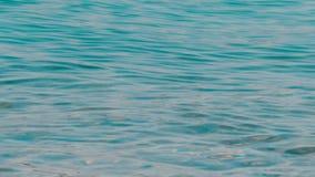 Lanzamiento estático del mar azul metrajes