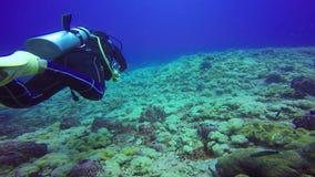 Lanzamiento subacuático de los buceadores que nadan en agua clara azul