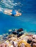 Lanzamiento subacuático de un muchacho joven que bucea en el Mar Rojo Foto de archivo