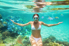 Lanzamiento subacuático una muchacha en bikini en el fondo del arrecife de coral Foto de archivo