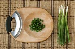 Lanzamientos salvajes de la cebolla verde Fotografía de archivo