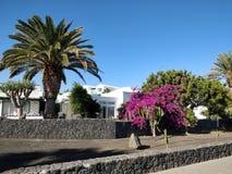 Lanzarote Imagens de Stock