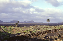 Lanzarote. View of south Lanzarote stock photos