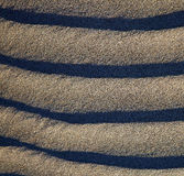 in lanzarote   abstract of a  dry sand  the beach Stock Photo