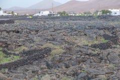 Lanzarote antique Lava Rock et élevage de vin Image libre de droits