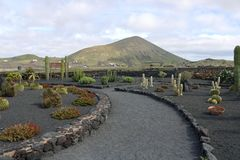 Lanzarote on the Canaries. Beautiful Island Lanzarote on the Canaries stock photo