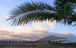 Lanzarote, Canary Island Stock Photos