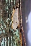 Lanzarote de abstracte groene bruine berg van de vensterhemel hil Stock Afbeeldingen