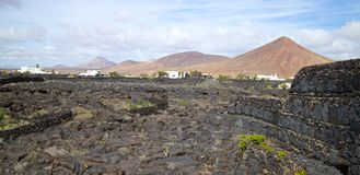 Lanzarote Desert and Settlement Stock Image