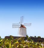 Lanzarote Guatiza cactus garden windmill Royalty Free Stock Photos