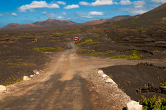 Lanzarote island vineyard landscape Royalty Free Stock Photo