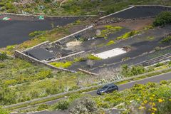 Lanzarote landscapes with road Royalty Free Stock Photography