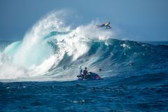 Surfer in the big wave royalty free stock photo