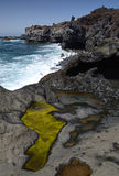 Lanzarote's coast vertical landscape Royalty Free Stock Photo