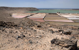 Lanzarote's salt fields Royalty Free Stock Images
