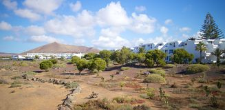 Lanzarote settlement and park Royalty Free Stock Photos
