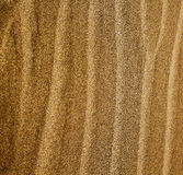 in lanzarote  spain   of a  dry sand and the beach Stock Image