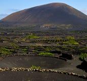 Lanzarote spain la geria s  cultivation viticulture winery, Stock Image
