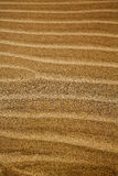 in lanzarote spain texture abstract dry sand and the beach royalty free stock photography
