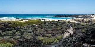 Lanzarote strand Arkivfoton