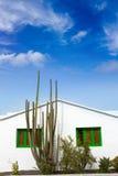Lanzarote Teguise white and cactus village Stock Photos