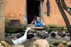 Lao Cai, Vietnam - 7 de septiembre de 2017: La muchacha étnica borda en puerta en su casa con aves de corral en la tierra en Y Ty Fotografía de archivo