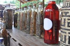 Lao Rice Whiskey com serpentes e escorpião, Laos Fotografia de Stock Royalty Free