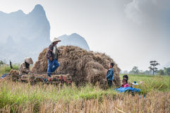 Lao's life. Photo about Agriculturist traditional in laos Royalty Free Stock Images