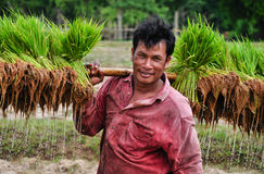 Lao's life. Photo about Agriculturist traditional in laos Stock Photo