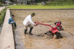 LAOCAI,越南, 6月10日:工作在米fi的未认出的农夫 免版税库存照片