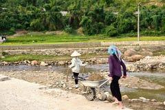 LAOCAI, VIETNAM, EL 11 DE JUNIO: Granjeros no identificados que trabajan en el arroz fi Foto de archivo libre de regalías