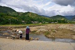 LAOCAI, VIETNAM, EL 11 DE JUNIO: Granjeros no identificados que trabajan en el arroz fi Imagen de archivo libre de regalías