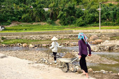LAOCAI, VIETNAM, JUN 11: Niet geïdentificeerde landbouwers die in rijstfi werken Royalty-vrije Stock Foto