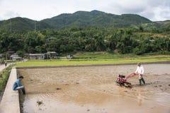 LAOCAI, VIETNAME, O 10 DE JUNHO: Fazendeiros não identificados que trabalham no arroz fi Foto de Stock Royalty Free