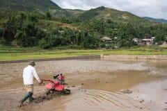 LAOCAI, VIETNAME, O 10 DE JUNHO: Fazendeiros não identificados que trabalham no arroz fi Imagem de Stock Royalty Free