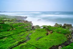 Laomei在石门区,新的台北,台湾绿化礁石-台湾北海岸季节性特点,射击 库存图片